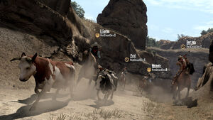 Rdr the herd01
