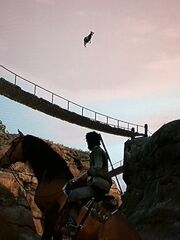 Rdr flying cows