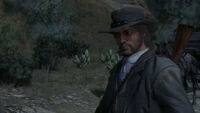 Rdr mexican wagon train41