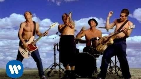 Red Hot Chili Peppers - Californication Official Music Video