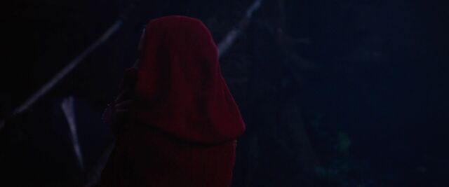 File:Red-Riding-Hood-BluRay-2011-Film-red-riding-hood-23983168-1920-800.jpg