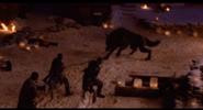 185px-Thewolf