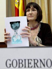 Wikileaks-Sostenible