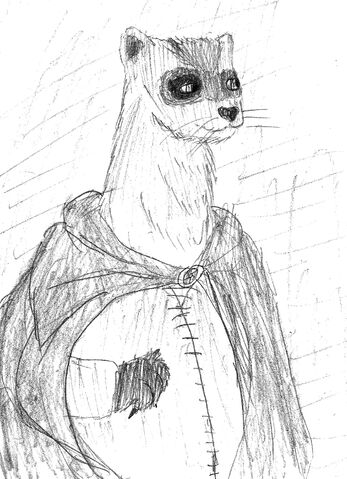 File:Ferret for Squirrelmaiden.jpg