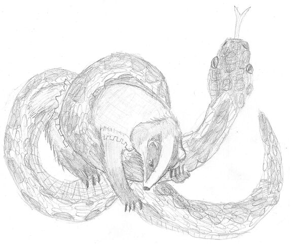 File:Lord Rose Thorn Fighting Adder.jpg