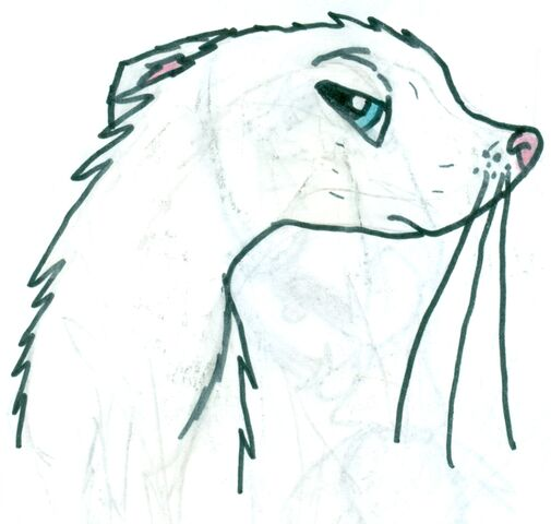 File:Jenno portrait.jpg