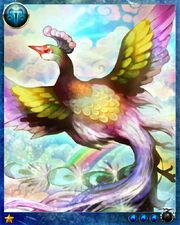 Rainbow Bird2
