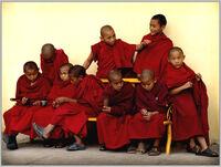 Lil monks-2285