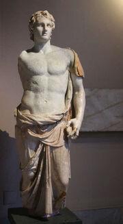 Alexander1256