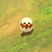 Half hatched egg crop