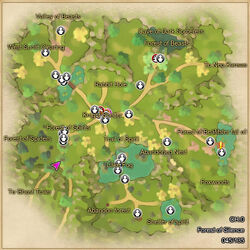 Forest of silence map
