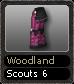 Woodland Scouts 6