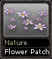Nature Flower Patch
