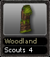 Woodland Scouts 4