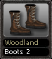 Woodland Boots 2