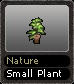 Nature Small Plant