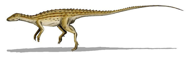 File:Scutellosaurus.jpg