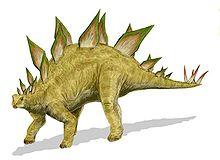 Stegasaurus Stenops