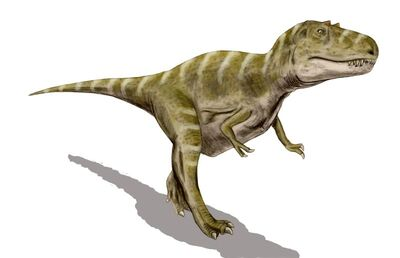 Gorgosaurus BW