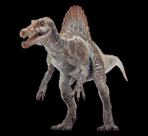 File:Spinosaurus render.jpg