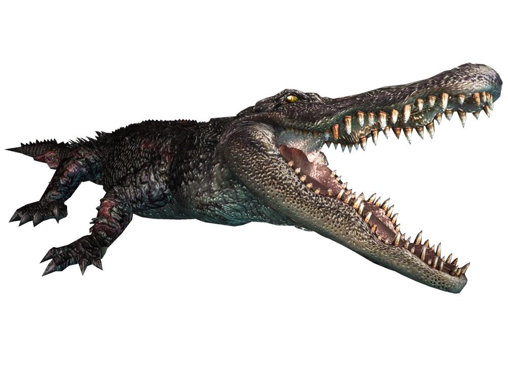 Archivo:Alligator ene.jpg