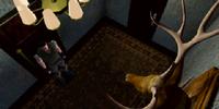 Stuffed deer room