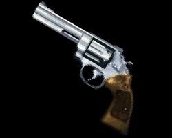 File:20111201031957!Magnum3.jpg