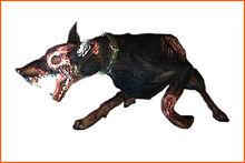 Zombiedog ene.jpg
