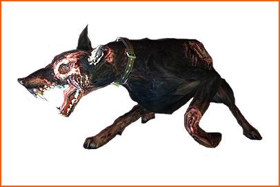 Fichier:Zombiedog ene.jpg