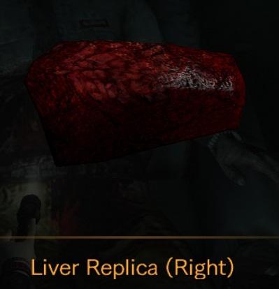 File:Liver Replica Right.jpg
