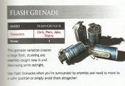FlashGrenadeDescription
