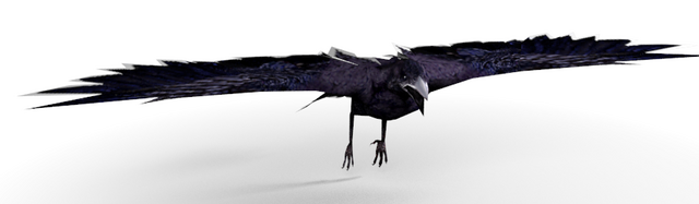 File:Crow-0.png