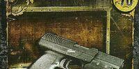 Punisher (WE-033)