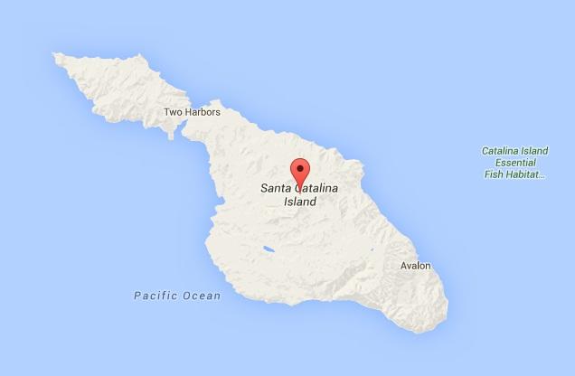 File:Santa Catalin Island.jpg