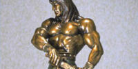 Hard Hero Conan the Barbarian Bronze FS