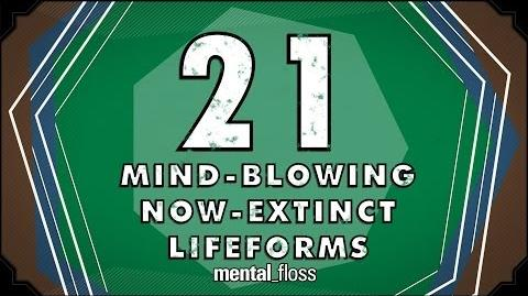 21 Mind-Blowing Now-Extinct Lifeforms - mental floss on YouTube (Ep