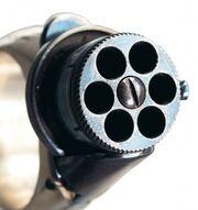Six shot protector1-283x300