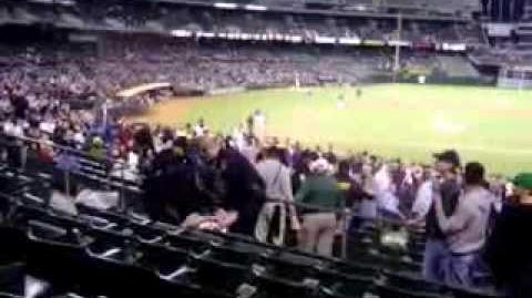 Epic Beard Man Gets Tazered at Baseball Game