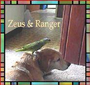 Hilaire9 Pets ZeusandRanger