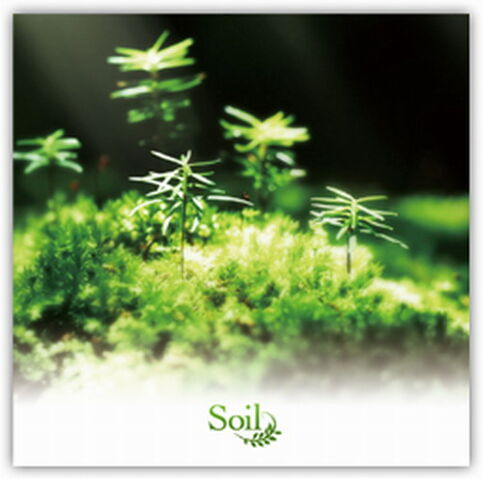 File:Soil Cover.jpg