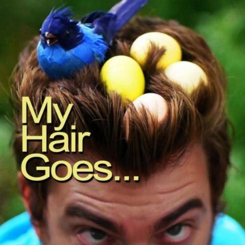 File:My Hair Goes... Single Cover.png