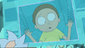 S1e10 memory hook up morty.png