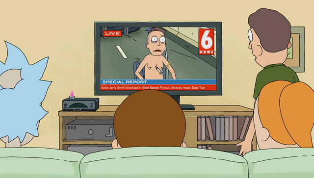 File:S1e8 jerry on news.png