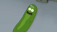 S3e3 pickle riiick