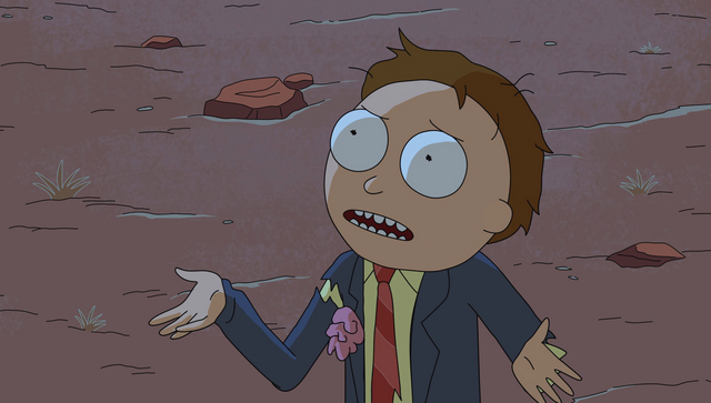 File:S1e6 morty what.png
