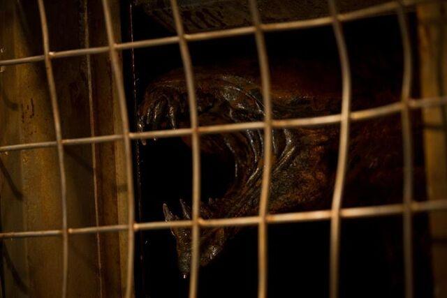 File:Riddick 3 Beast.jpg