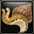 Irresistible Water Snail Icon