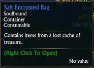 Salt Encrusted Bag