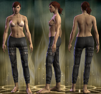 PvP R4 Leather Seeker Legs Female