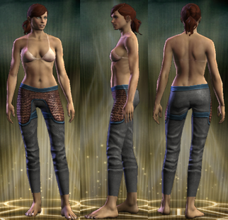 PvP R6 Chain Exemplar Legs Female